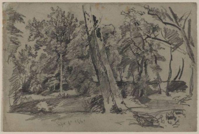 WikiOO.org - 百科事典 - 絵画、アートワーク William Trost Richards - 木で ザー  ウッズ
