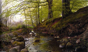Vandlob I Skoven