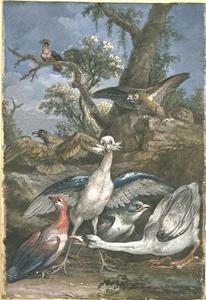 Eight birds in a landscape