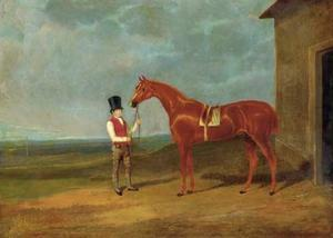 Mr. Dixon's Mountaineer, a chestnut colt, held by a groom outside a stable