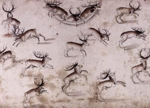 Study for a wall decoration with stags