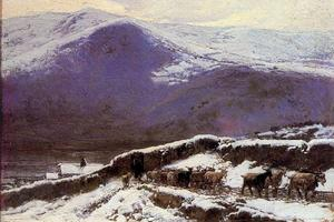 Flock in winter
