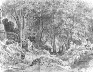 Deciduous forest on rocky coast, Valaam