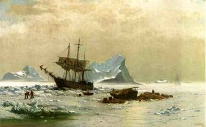 The Ice Floes