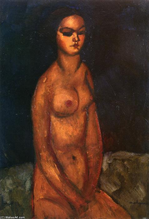 Wikioo.org - The Encyclopedia of Fine Arts - Painting, Artwork by Amedeo Modigliani - Seated nude