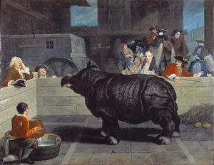 Rhinoceros in Venice