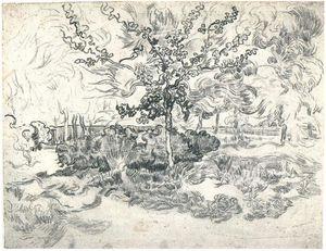 Garden of the Asylum