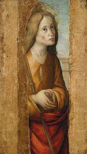 Macrino D' Alba