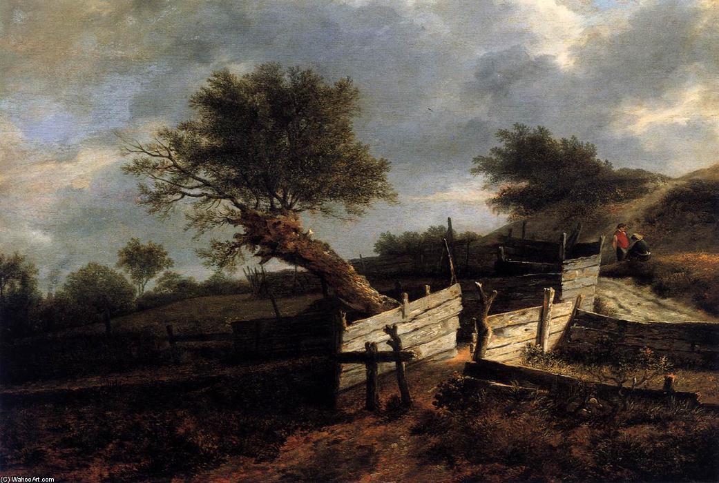 Wikioo.org - Bách khoa toàn thư về mỹ thuật - Vẽ tranh, Tác phẩm nghệ thuật Isaack Van Ruisdael - The Plank Fence
