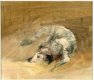 Wikioo.org - The Encyclopedia of Fine Arts - Artist, Painter  David Cox