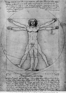 Vitruvian Man, Study of proportions, from Vitruvius's De Architectura