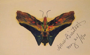 Butterfly (second version)