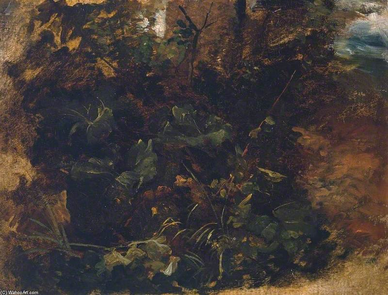 Wikioo.org - The Encyclopedia of Fine Arts - Painting, Artwork by Peter De Wint - Study Of Burdock And Other Plants