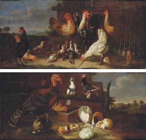 Círculo De David De Coninck)