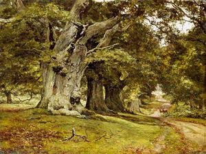 The Oak's Massive Trunk