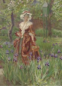 Wandering Through The Irises