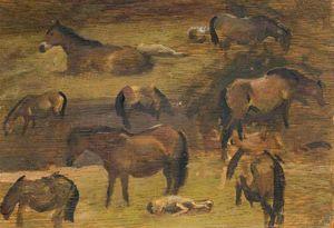 Studies Of Exmoor Ponies