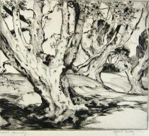 In Burnham Wood