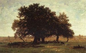 Oak Trees near Apremont