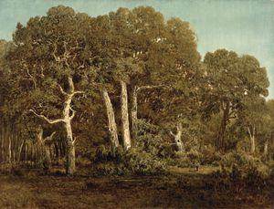 The Great Oaks of Old Bas-Breau