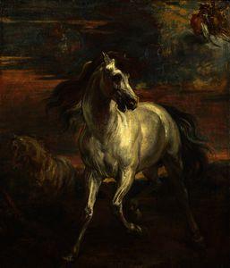los caballos todaclasede  Aquiles