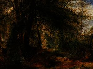 The woodland mirror