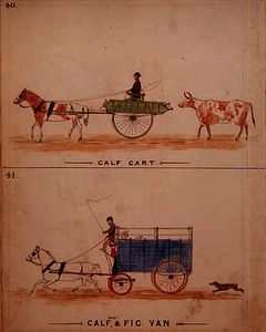The Calf Cart and the Calf