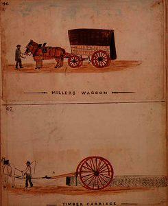 William Francis Freelove