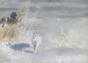 Winterhare (Snow Hare), (1932)