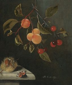 Still life with a butterfly, apricots, cherries and a chestnut