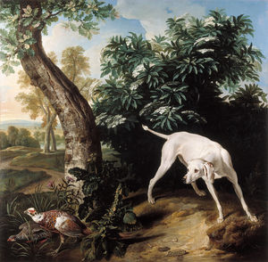 Chienne blanche devant un buisson de sureau
