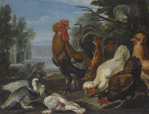 Un gallo, gallinas, palomas y un loro en un jardín formal,
