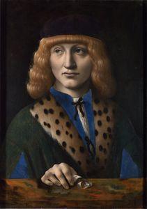 The archinto portrait