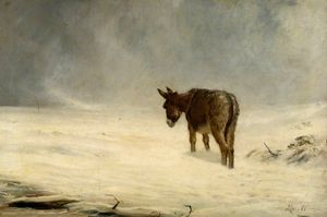 A Donkey in Snow