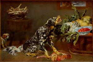 Dog in a kitchen at Palais des Beaux-Arts de Lille.