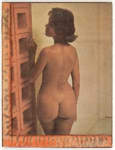 Untitled (standing nude brunette by cinderblock wall)