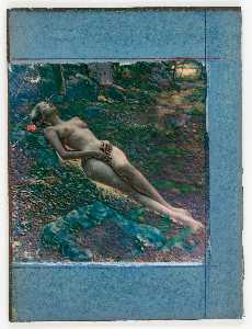 Untitled (nude female lying in forest undergrowth)
