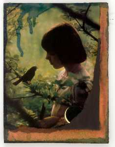 Untitled (girl in woods looking at bird on tree branch)