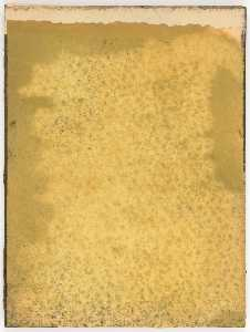 Untitled (manila paper stained yellow)