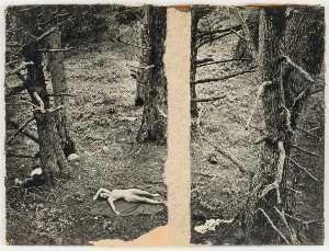 Untitled (nude on blanket on forest floor)