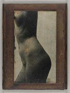 Untitled (side view, nude female torso)