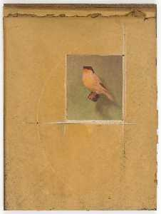 Untitled (canary on perch)
