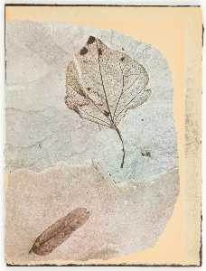 Untitled (two fossilized leaves)