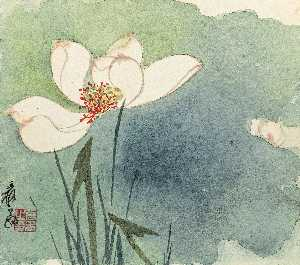 LOTUS WITH DEW