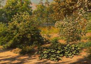 Flowering shrubs in the garden