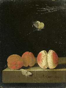 English Still life with peach and two apricots