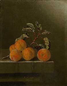 English Still life with five apricots