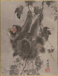 Monkey Hanging from Grapevines
