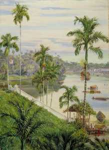 View down the River at Sarawak, Borneo