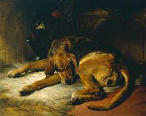 Sleeping Bloodhound